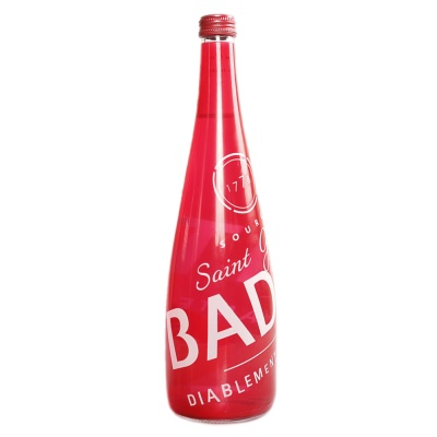 Badoit Sparkling Water Glass Rouge 750ml