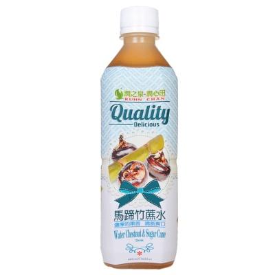 RuhnChan Water Chestnut & Sugar Cane Drink 480ml