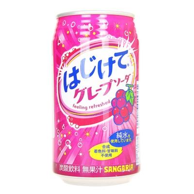 三佳利葡萄碳酸饮料 350g
