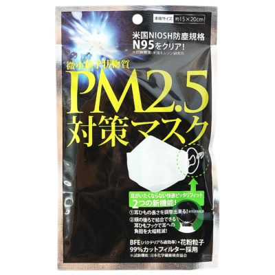 N95 Anti PM2.5 Mask 15*20cm