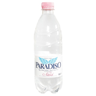 Paradisp Natural Mineral Water 500ml