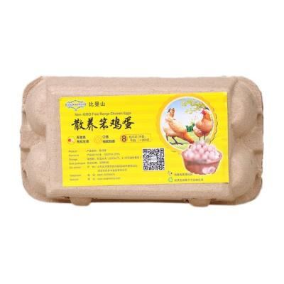 Piedmontio Free Range Chicken Egg 8pcs