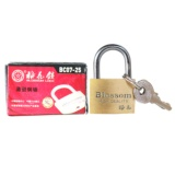 Blossom Copper Lock (25#) - 1